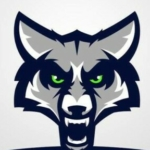 Group logo of Timpanogos High School